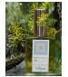 DSH Perfumes Vetyver