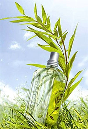 Verbena Sun L`Occitane en Provence for women