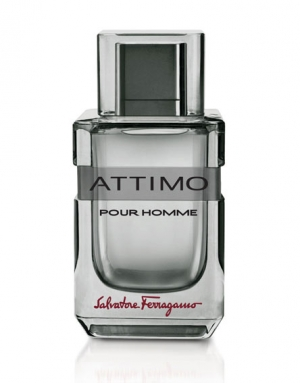 Attimo Pour Homme Salvatore Ferragamo for men