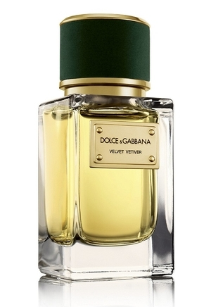 Velvet Vetiver Dolce&Gabbana for women and men