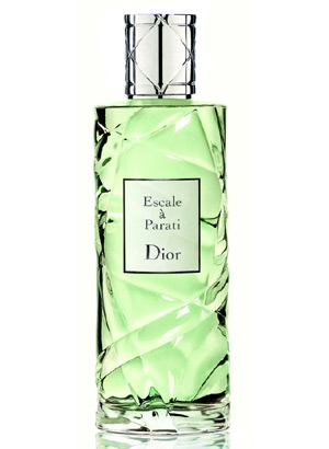 Cruise Collection Escale a Parati Dior for women and men