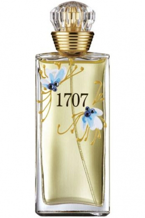 1707 Blue M. Micallef for women