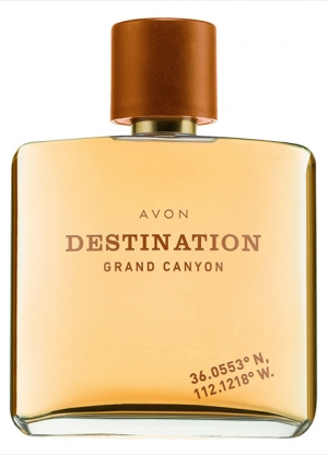 http://fimgs.net/images/perfume/nd.30963.jpg