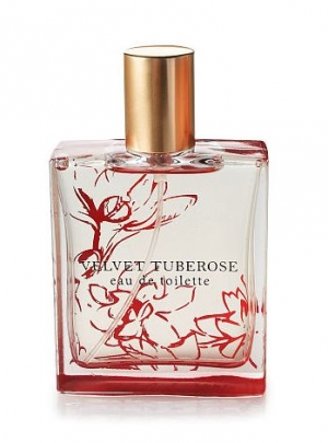 Velvet Tuberose Bath and Body Works for women