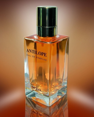 Antilope Weil for women