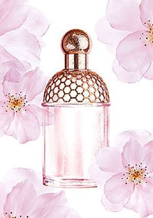 Aqua Allegoria Cherry Blossom Guerlain for women