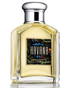 Havana Aramis for men
