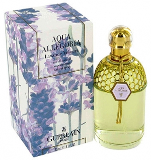 Aqua Allegoria Lavande Velours Guerlain for women and men