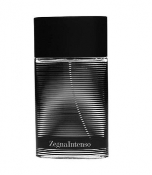 Zegna Intenso Ermenegildo Zegna for men