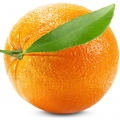 Italian Orange