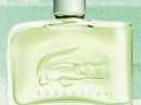 Essential Lacoste for men Pictures