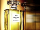 Chanel No 19 Eau de Parfum Chanel for women Pictures