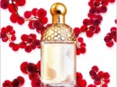 Aqua Allegoria Grosellina Guerlain for women Pictures