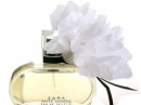 White Jasmine Zara for women Pictures