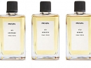 No9 Benjoin Prada for women and men Pictures