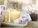 Lavender Thymes for women Pictures