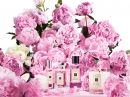 Peony and Blush Suede Jo Malone for women Pictures