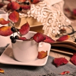 Perfumed Horoscope November 17 - November 23
