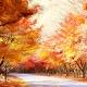 Perfumed Horoscope November 10 - November 16