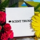 Scent Trunk - Now for Women!