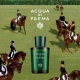 The Landed Gentry: Acqua di Parma Colonia Club