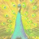 Hiram Green Voyage: A Precious Peacock
