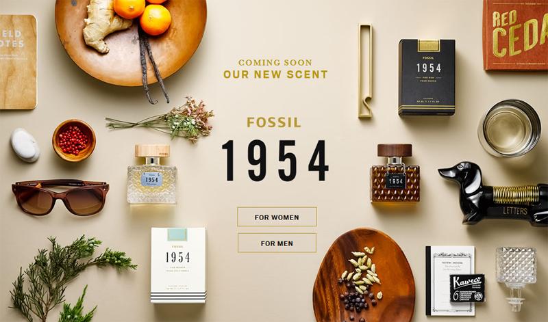 la meilleure attitude 33515 ca877 Fossil 1954 pour homme, Fossil 1954 pour femme ~ Nouveaux ...