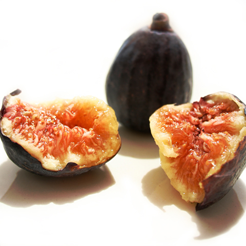 Do not fear the fig bearers ~ Raw Materials