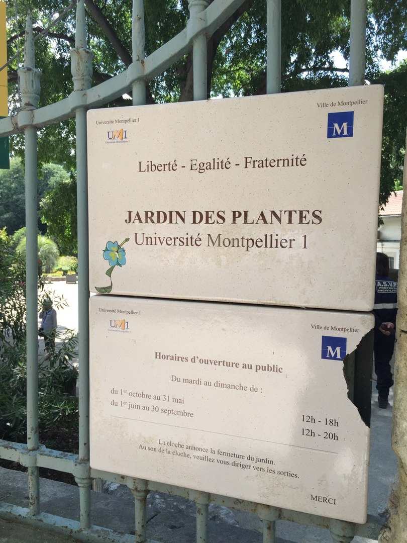 The Former Perfume Capital: A Journey to Montpellier ...