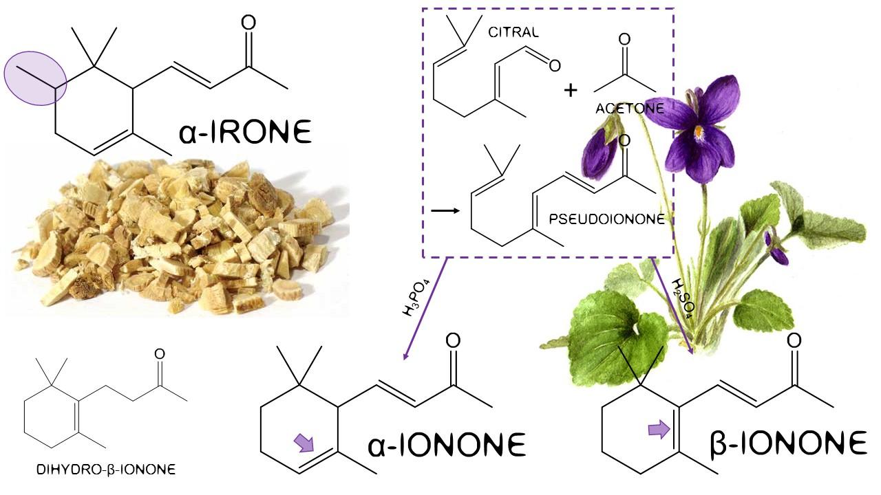 Irone Ionone