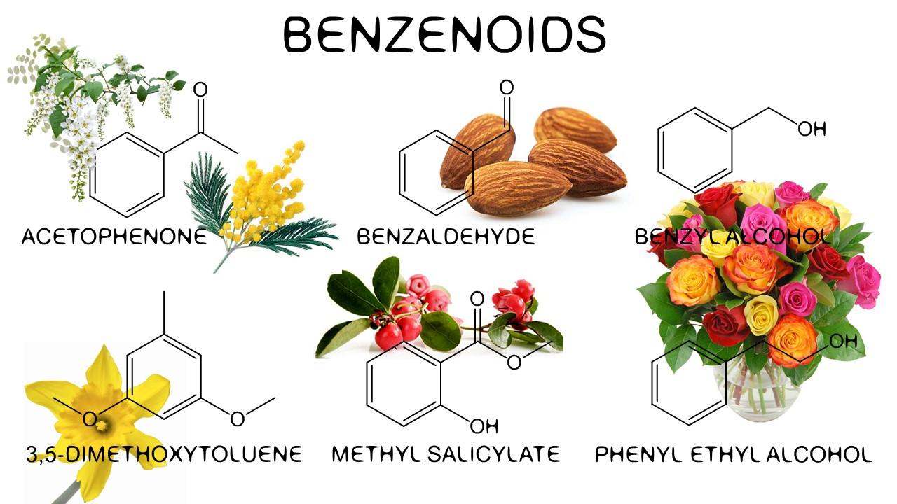 Benzenoids in tulips