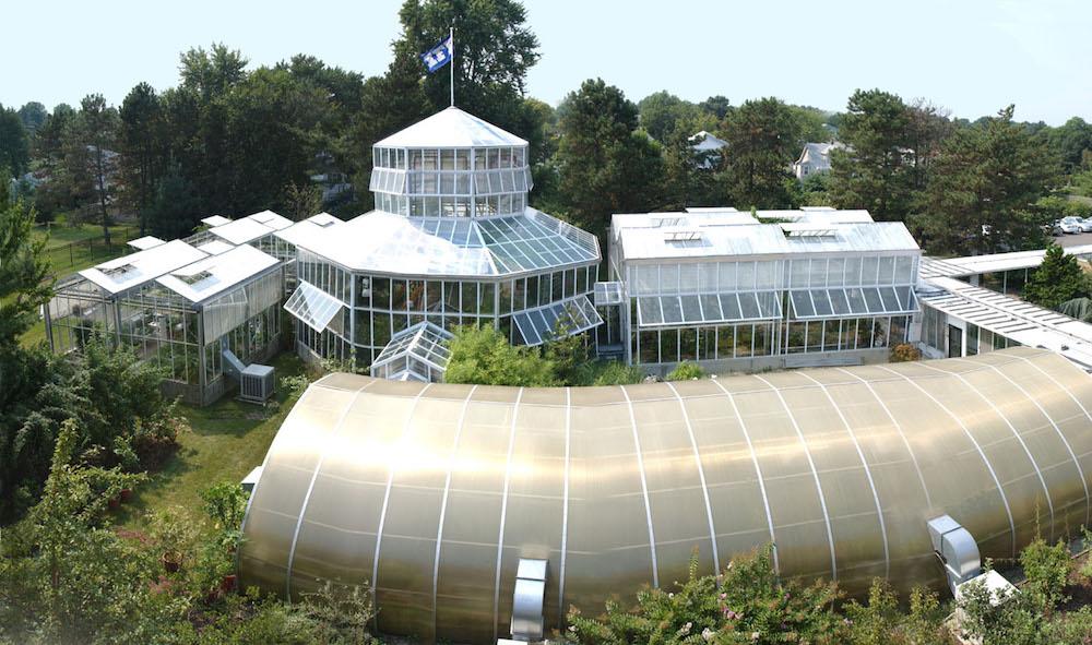 IFF greenhouses