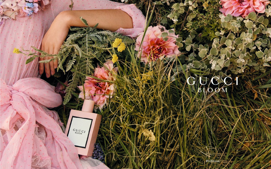 d4dcabc93bb Gucci Bloom Acqua di Fiori is scheduled to come out in spring 2018 as the  first flanker of the original floral Gucci Bloom fragrance from 2017 and  the ...