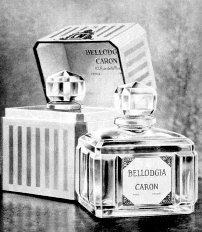 Bellodgia Caron