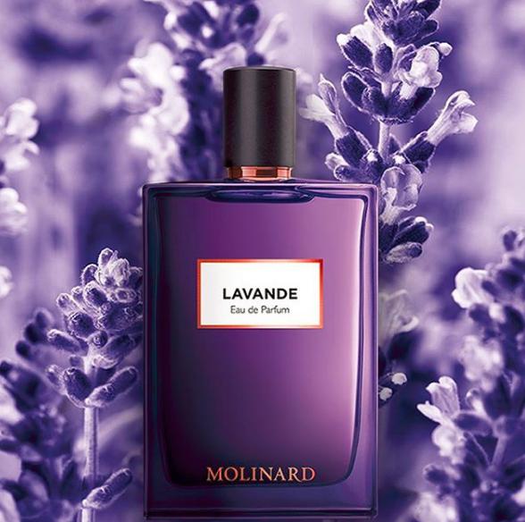 Du ~ Parfums Colonnes Nouveau Chez Molinard 34RL5Ajq