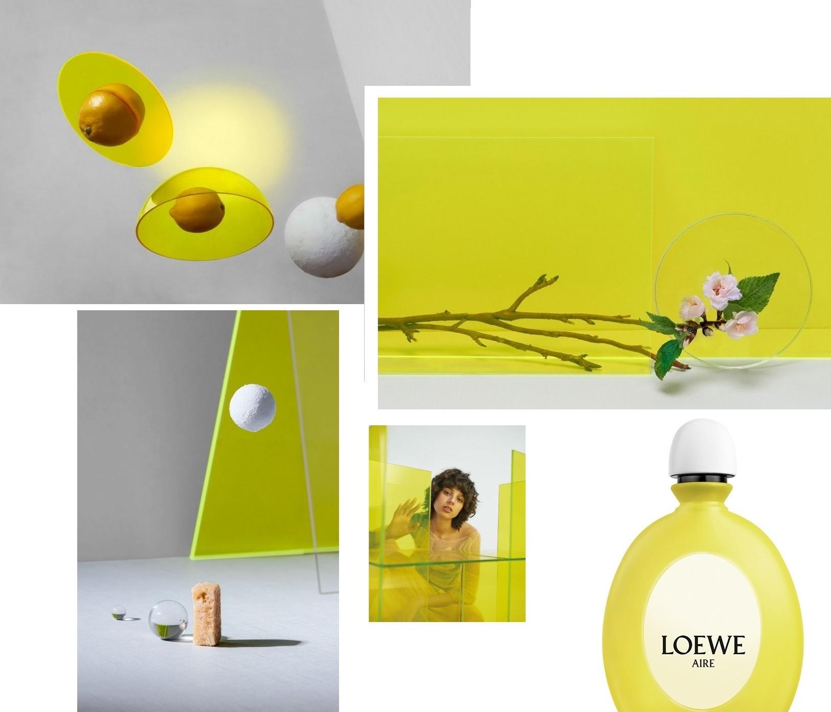 Loewe Aire Loewe Fantasía