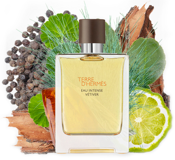 Now In Stores Terre Dhermes Eau Intense Vetiver Now In Stores