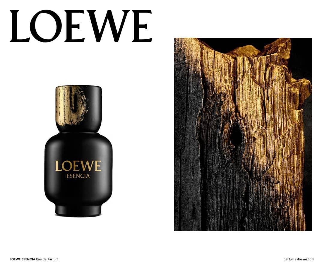Loewe Nouveaux Esencia De Homme Eau Parfums Pour ~ Parfum ZuOPkiX
