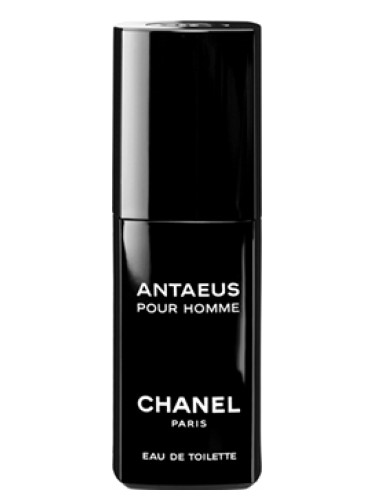 Antaeus Chanel cologne - a fragrance for men 1981