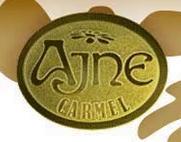 Ajne Logo