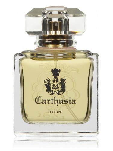 Carthusia Lady