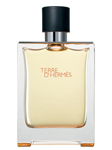 terre d 39 hermes herm s cologne a fragrance for men 2006. Black Bedroom Furniture Sets. Home Design Ideas