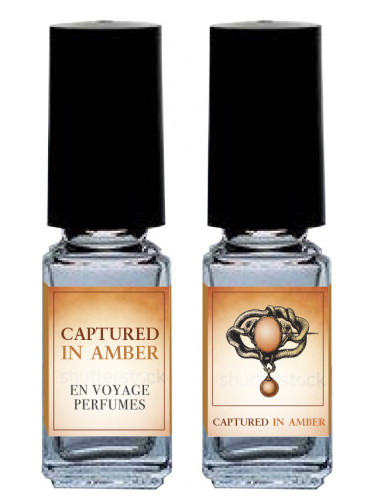 Captured in Amber