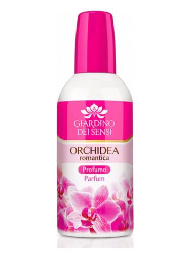Orchidea Romantica