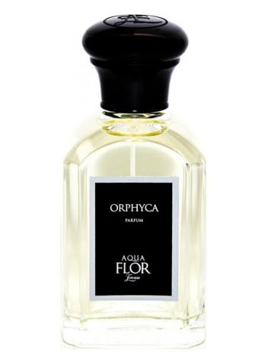 Orphyca