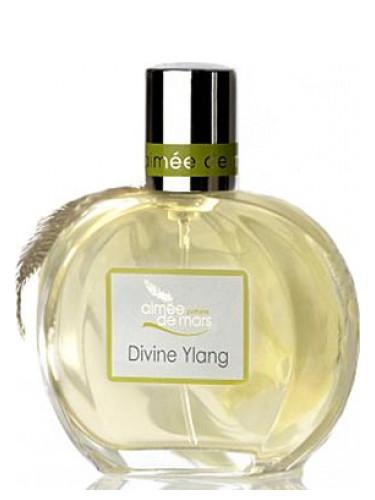 Divine Ylang