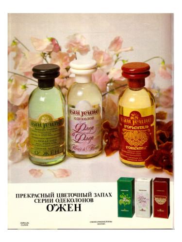 eau jeune l 39 orientale novaya zarya cologne un parfum pour homme. Black Bedroom Furniture Sets. Home Design Ideas