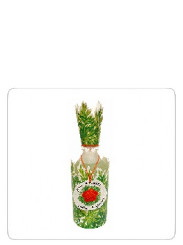 fleur carotte