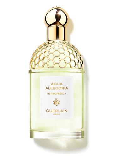 aqua allegoria herba fresca guerlain аромат аромат для мужчин и  aqua allegoria herba fresca guerlain для мужчин и женщин