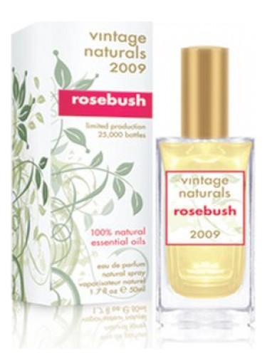 Vintage Naturals 2009 Rosebush